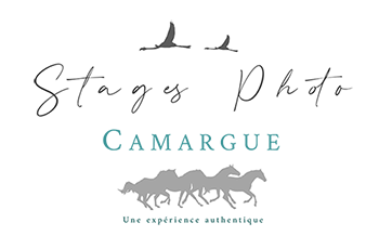 logo stages photo camargue